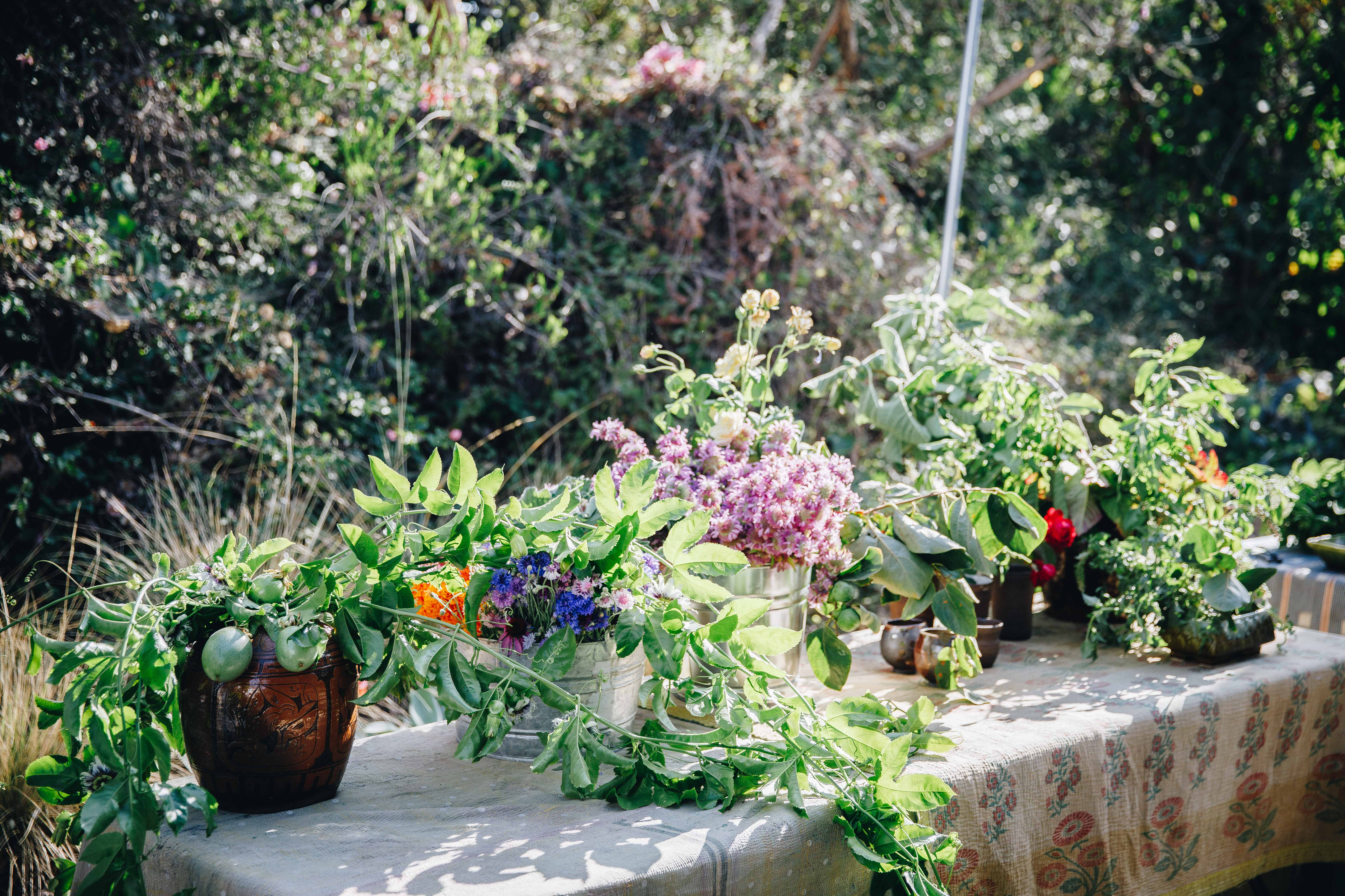 All Sorts Of - Foraged Flora Workshop - Louesa Roebuck