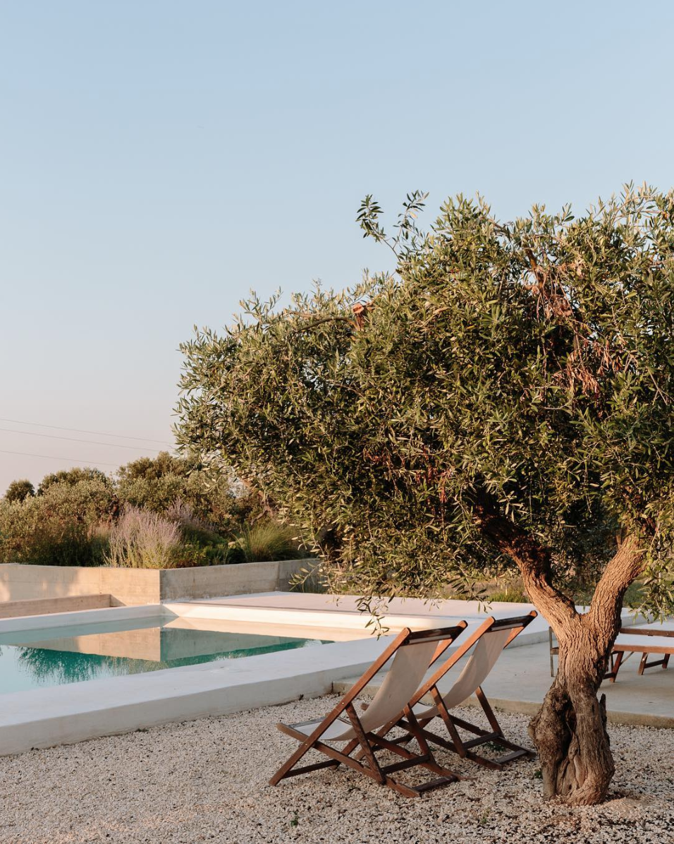 All Sorts Of - Masseria Moroseta - Photo by Marina Denisova